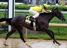 "Aubby K won the Humana Distaff Stakes May 4 by 1 1/2 lengths.<br><a target=""blank"" href=""http://photos.bloodhorse.com/AtTheRaces-1/at-the-races-2013/27257665_QgCqdh#!i=2493862531&k=bb7HxDf"">Order This Photo</a>"