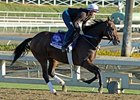 "Second City<br><a target=""blank"" href=""http://photos.bloodhorse.com/BreedersCup/2012-Breeders-Cup/Works/26130247_gxH6nS#!i=2185430480&k=H2KdSw7"">Order This Photo</a>"