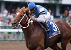 Tampa Bay Stakes: Duke of Mischief Tries Turf