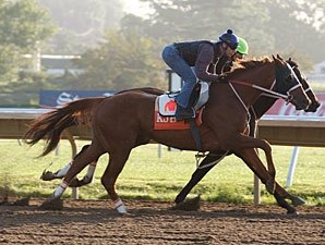 Shackleford, 'Ice' in Final Travers Works