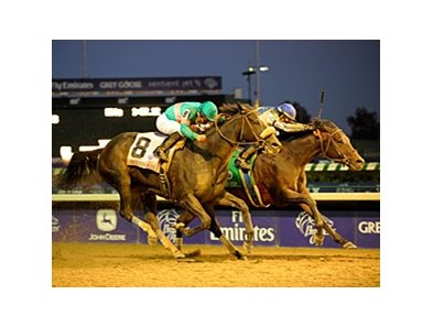 "Blame holds off Zenyatta to win the Breeders' Cup Classic.<br><a target=""blank"" href=""http://www.bloodhorse.com/horse-racing/photo-store?ref=http%3A%2F%2Fpictopia.com%2Fperl%2Fgal%3Fprovider_id%3D368%26ptp_photo_id%3D9267498%26ref%3Dstory"">Order This Phot"