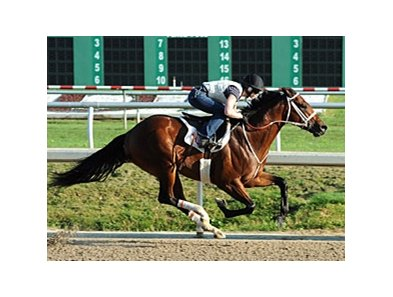 Mark Valeski worked five furlongs March 27 at Fair Grounds.