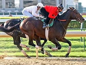 Z Humor works at Churchill Downs.