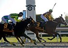 "Satans Quick Chick pulls away in the Raven Run under Leandro Goncalves.<br><a target=""blank"" href=""http://www.bloodhorse.com/horse-racing/photo-store?ref=http%3A%2F%2Fpictopia.com%2Fperl%2Fgal%3Fprovider_id%3D368%26ptp_photo_id%3D8574917%26ref%3Dstory"">Order This Photo</a>"