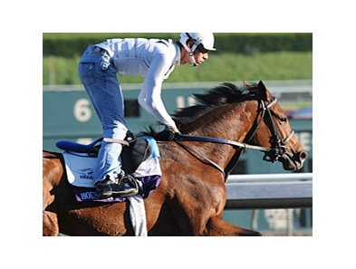 Undefeated House of Grace was made the 4-1 second choice in the Breeders' Cup Juvenile Fillies Turf.