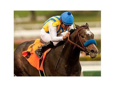"The Factor<br><a target=""blank"" href=""http://www.bloodhorse.com/horse-racing/photo-store?ref=http%3A%2F%2Fpictopia.com%2Fperl%2Fgal%3Fprovider_id%3D368%26ptp_photo_id%3D9414898%26ref%3Dstory"">Order This Photo</a>"