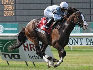 Courageous Cat wins the 2011 Poker Stakes.
