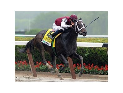 "It's Tricky is in command in the Acorn.<br><a target=""blank"" href=""http://www.bloodhorse.com/horse-racing/photo-store?ref=http%3A%2F%2Fpictopia.com%2Fperl%2Fgal%3Fprovider_id%3D368%26ptp_photo_id%3D9561662%26ref%3Dstory"">Order This Photo</a>"