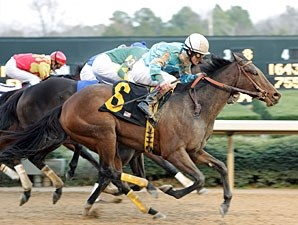French Kiss wins the 2009 Pippin Stakes