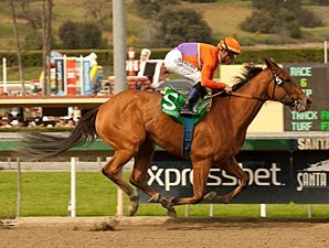 Beholder wins the 2013 Las Virgenes.