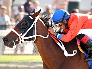 Harlan's Holiday Stakes Attracts Top Runners