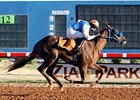 Jockey Alejandro Medellin wins his seventh race at Zia Park on Monday, Nov. 5 about the 2yo gelding Certification.