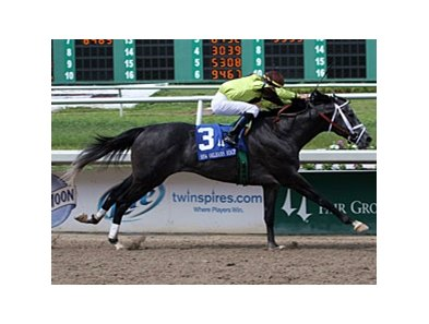 Mission Impazible won the New Orleans Handicap earlier this year.