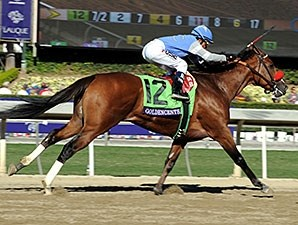 Goldencents in the 2013 Breeders' Cup Dirt Mile.