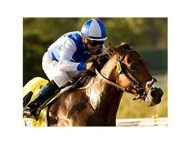 "J P's Gusto is the one to beat in the Southwest Stakes.<br><a target=""blank"" href=""http://www.bloodhorse.com/horse-racing/photo-store?ref=http%3A%2F%2Fpictopia.com%2Fperl%2Fgal%3Fprovider_id%3D368%26ptp_photo_id%3D9176160%26ref%3Dstory"">Order This Photo</a>"