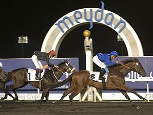 Mental Foils Krypton Factor in Meydan Sprint