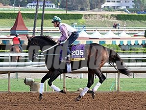 Close Hatches - Breeders' Cup 2014