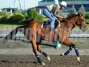 Moment of Majesty at Woodbine on June 8, 2010.