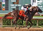 Giant Gizmo won the Lone Star Handicap (gr. III)