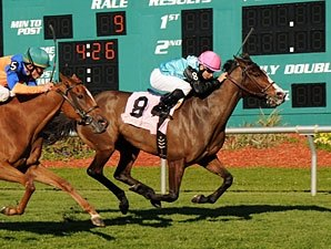Denomination the One to Beat in Violet Stakes