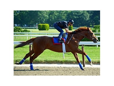"Animal Kingdom worked a half-mile in :47.76 at Belmont on June 6.<br><a target=""blank"" href=""http://www.bloodhorse.com/horse-racing/photo-store?ref=http%3A%2F%2Fpictopia.com%2Fperl%2Fgal%3Fprovider_id%3D368%26ptp_photo_id%3D9552730%26ref%3Dstory"">Order This Photo</a>"