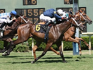 Tiger Girl wins the 2010 Donnie Wilhite Memorial Stakes.