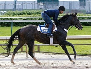 Dialed In - Churchill Downs, May 3, 2011.