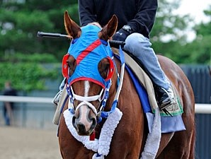 Guyana Star Dweej at Belmont Park 6/4/2012