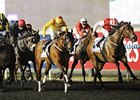 "Reynaldothewizard (left) streaks home to win the Dubai Golden Shaheen.<br><a target=""blank"" href=""http://photos.bloodhorse.com/AtTheRaces-1/at-the-races-2013/27257665_QgCqdh#!i=2432716974&k=JShkGjd"">Order This Photo</a>"