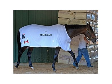 Orb shows off his Maserati blanket.