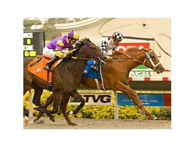 Clubhouse Ride faces six in the Californian Stakes at Betfair Hollywood Park.