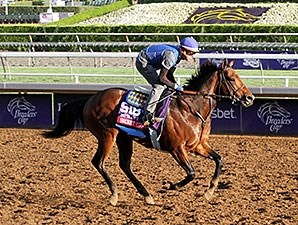 Secret Circle - Breeders' Cup 2014