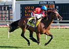English-bred Dank won the Beverly D at Arlington Park by 4 1/4 lengths.
