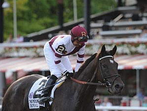 Royal Delta wins the 2013 Personal Ensign.