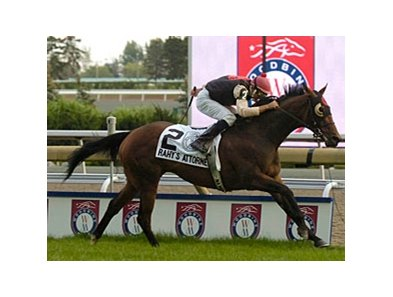 Woodbine Mile winner Rahy's Attorney will make his first start outside of Canada in the Shadwell Turf Mile.