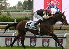 Rahy's Attorney won the 2008 Woodbine Mile.