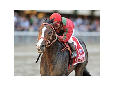 "Flat Out drew post 6 in the 13-horse field of the Clark.<br><a target=""blank"" href=""http://www.bloodhorse.com/horse-racing/photo-store?ref=http%3A%2F%2Fpictopia.com%2Fperl%2Fgal%3Fprovider_id%3D368%26ptp_photo_id%3D9694502%26ref%3Dstory"">Order This Photo</a>"
