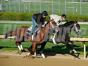 Revolutionary works at Churchill Downs 4/21/2013.