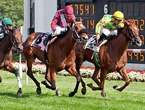 Leading Astray wins the 2012 Hatoof.