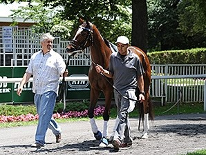 Untapable schools at Belmont Park on June 26, 2014.