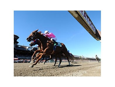 "Sweet Lulu won the Test Stakes by a head at Saratoga this summer.<br><a target=""blank"" href=""http://photos.bloodhorse.com/AtTheRaces-1/at-the-races-2013/27257665_QgCqdh#!i=2722693944&k=GLBd4Fc"">Order This Photo</a>"