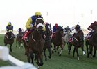 Shea Shea won the Meydan Sprint by 2 1/2 lengths.