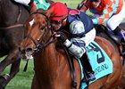Sweet Cassiopeia won the 2013 Giant's Causeway Stakes.