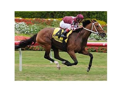 The Orchid Handicap (gr. IIIT) goes to the five-year-old mare Hostess, who won her first graded stakes in the process.