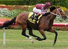 "Hostess won the March 30 Orchid Handicap (gr. IIIT) at Gulfstream Park. <br><a target=""blank"" href=""http://www.bloodhorse.com/horse-racing/photo-store?ref=http%3A%2F%2Fpictopia.com%2Fperl%2Fgal%3Fprovider_id%3D368%26ptp_photo_id%3D4024843%0D%0A%26ref%3Dstory"">Order This Photo</a>"