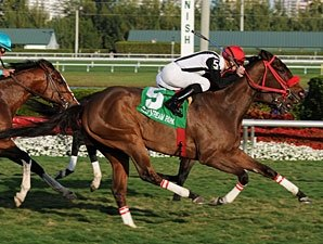 Teaks North, 25-1, Upsets GP Turf Handicap