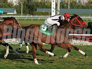 Teaks North wins the 2011 Gulfstream Park Turf Handicap.