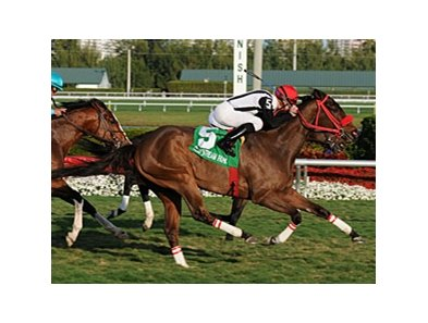 "Teaks North gets up late to win the Gulfstream Park Turf Handicap.<br><a target=""blank"" href=""http://www.bloodhorse.com/horse-racing/photo-store?ref=http%3A%2F%2Fpictopia.com%2Fperl%2Fgal%3Fprovider_id%3D368%26ptp_photo_id%3D9395110%26ref%3Dstory"">Order This Photo</a>"