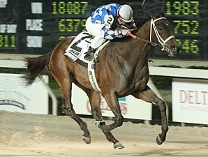 Coyote Legend wins the 2010 Triple Sec Stakes.