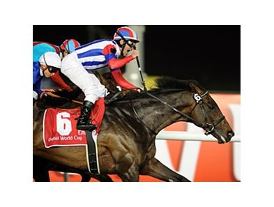 "Victoire Pisa takes the Dubai World Cup for Japan.<br><a target=""blank"" href=""http://www.bloodhorse.com/horse-racing/photo-store?ref=http%3A%2F%2Fpictopia.com%2Fperl%2Fgal%3Fprovider_id%3D368%26ptp_photo_id%3D9465093%26ref%3Dstory"">Order This Photo</a>"